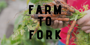 farm to Fork, EU strategy